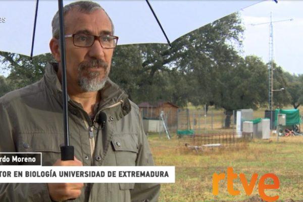 El Dr Gerado Moreno, investigador de Indehesa, entrevistado en RTVE