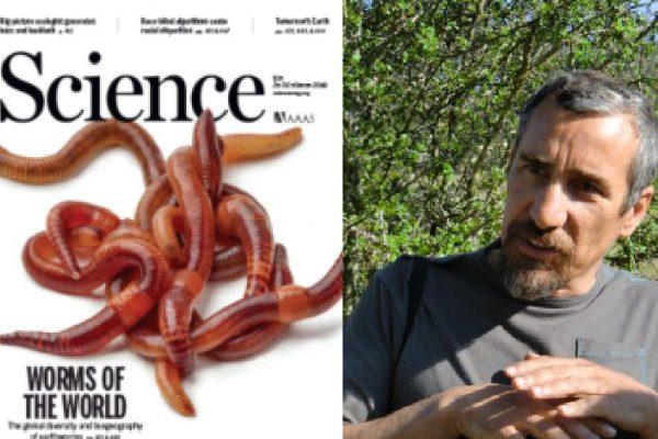 El Dr Gerardo Moreno, miembro de Indehesa, coautor del estudio Global distribution of earthworm diversity publicado en la revista Science.
