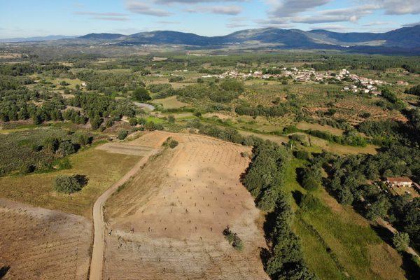 Greenpeace se hace eco del Proyecto Mosaico en su nuevo informe sobre la protección del mundo rural