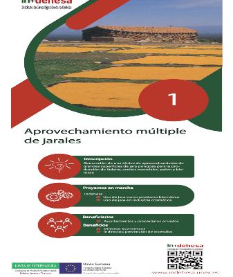 Retos de Innovación en la Dehesa – Sector Forestal (Parte 1)