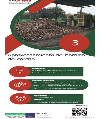 Retos de Innovación en la Dehesa – Sector Forestal (Parte 3)